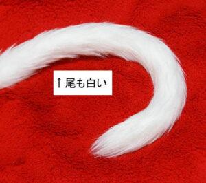 midourei20121212337